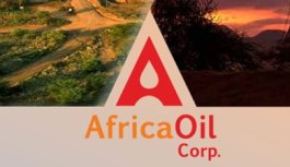Africa Drilling Lacking Despite Cheap Rigs, Higher Oil Price