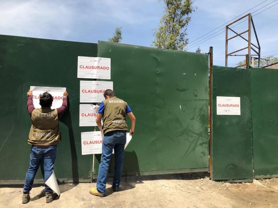 De nuevo talan árboles; ahora fueron 90 en Álvaro Obregón