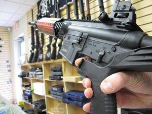 022613guns