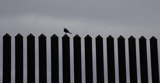 In this Monday, Nov. 14, 2016, photo, a bird rests on a section of 18-foot high border fence in Brownsville, Texas. The idea of a concrete wall spanning the entire 1,954-mile southwest frontier collides head-on with multiple realities, like a looping Rio Grande, fierce local resistance, and cost. (AP Photo/Eric Gay)