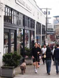 CHS Schemata | Conserving authenticity in Capitol Hill's buildings and streetscapes