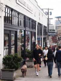 CHS Schemata   Conserving authenticity in Capitol Hill's buildings and streetscapes