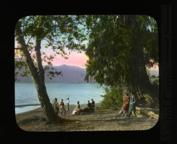 Lake Quinault by Asahel Curtis (Washington State Library)