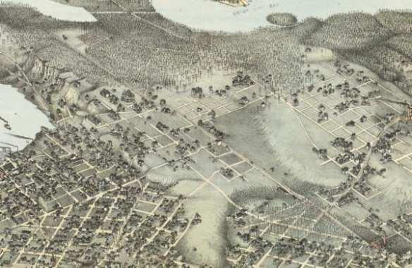 Koch Map, Library of Congress