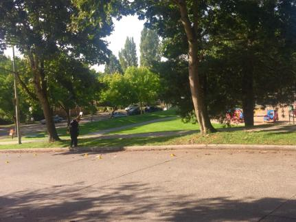 This picture of the shooting scene was posted to Reddit Seattle along with an account of the incident at the park