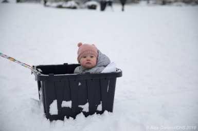 Snowpocalypse3-1
