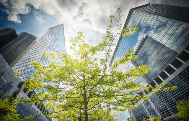 Colliers Federal Sustainability Mandates