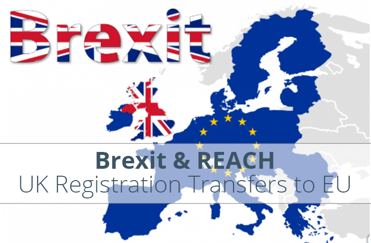 Brexit-REACH-UK-Registrations-European-EU-Only-representative