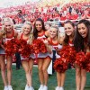 Utah Utes 2015 NCAA Football Gambling Odds & Predictions
