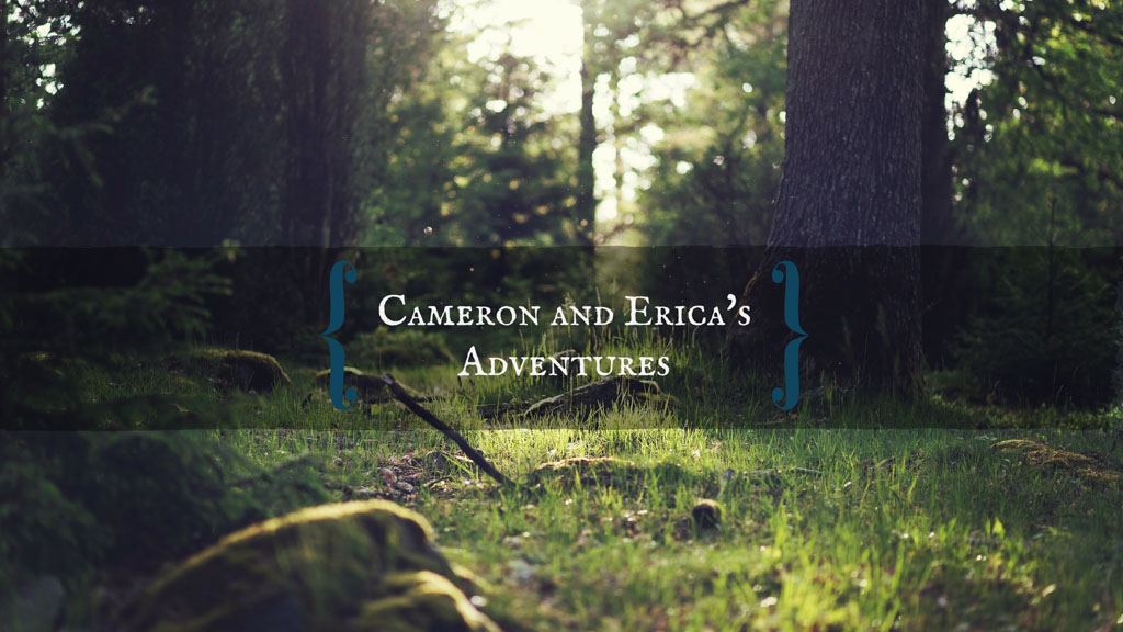 Cameron and Erica's Adventures YouTube Channel | The Captain's Log | www.captainairyca.com