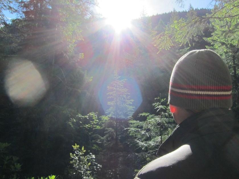 Shale Ridge Trail #3567 Review – Waldo Lake Wilderness Area, OR | The Captain's Log | www.captainairyca.com