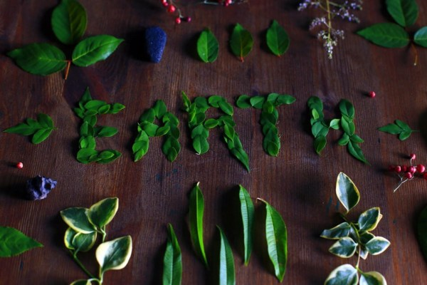 earth leaves