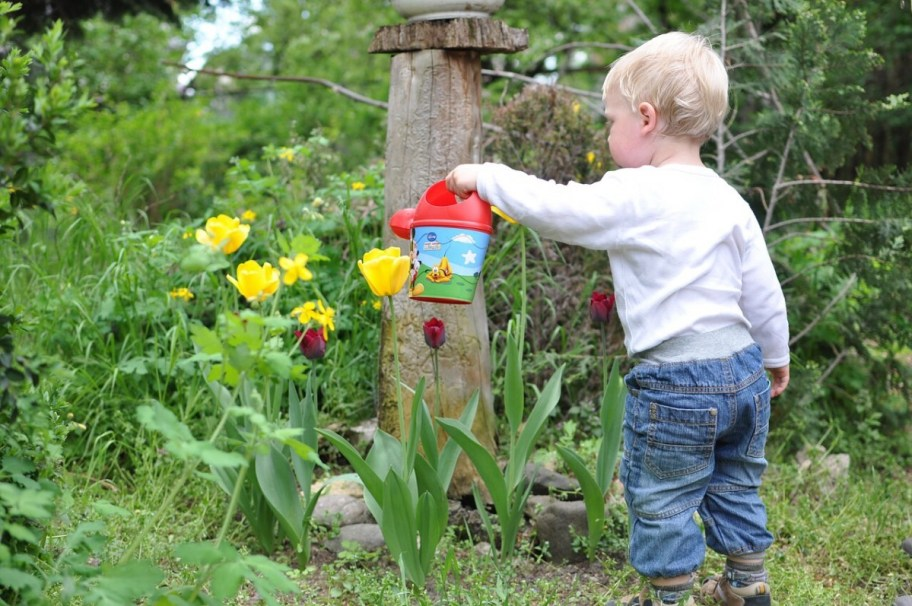 little boy watering garden