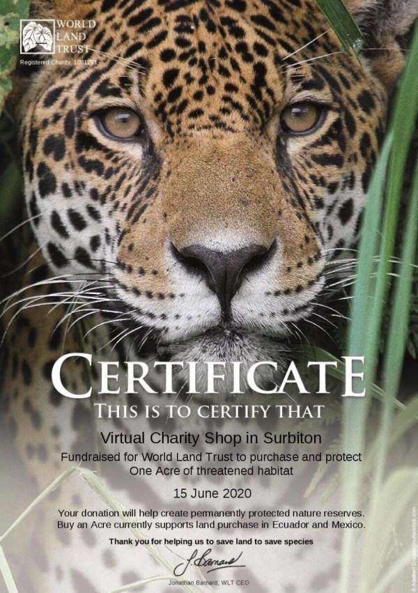 WLT certificate