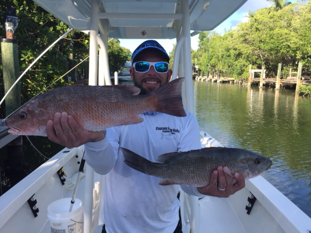 Big mangrove snapper caught in the bay off Marathon Fl Keys fishing charters.