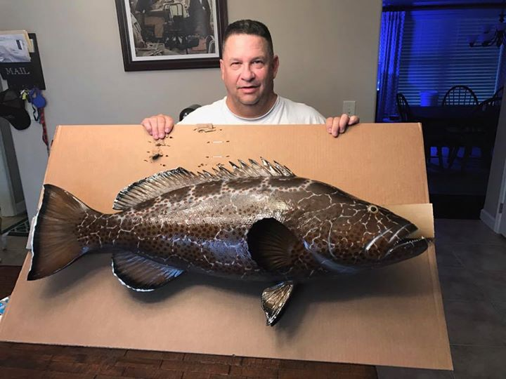 Way to go capt'!!My client Wayne's taxidermy came in. Capt Doug can set up your …