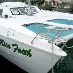 Catamaran Railings