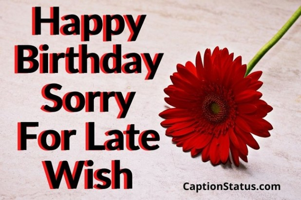 Happy Birthday Sorry For Late Wish