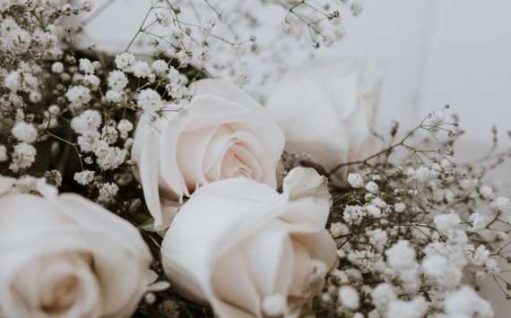 15+ Instagram Captions for Rose Day!!!
