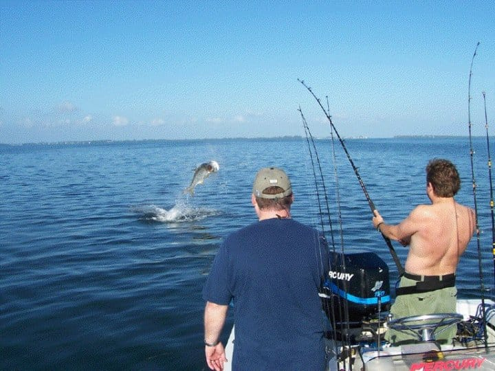 "6th Annual ""Ding"" Darling & Doc Ford's Tarpon Tournament Coming Up This Friday, May 19, Tarpon jumping on Sanibel & Captiva charters!"