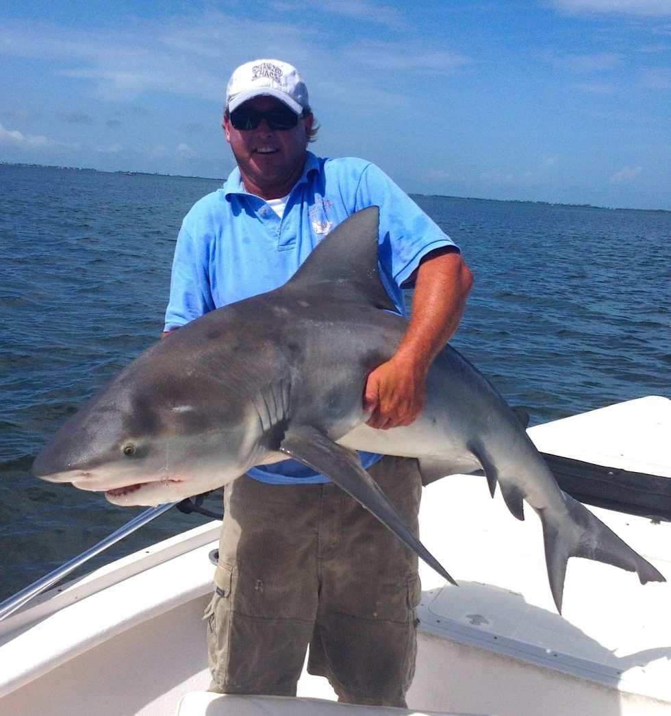 Friday, 10/11/13, Captiva Fishing Report: Big Bull Shark caught by captain Jimmy! Sanibel, Captiva & North Captiva, #Captiva