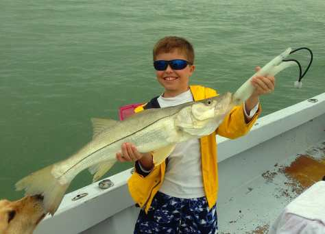 Snook caught of the Sanibel rock pile, Sanibel & Captiva Islands & Fort Myers Charters & Fishing Guide Service.