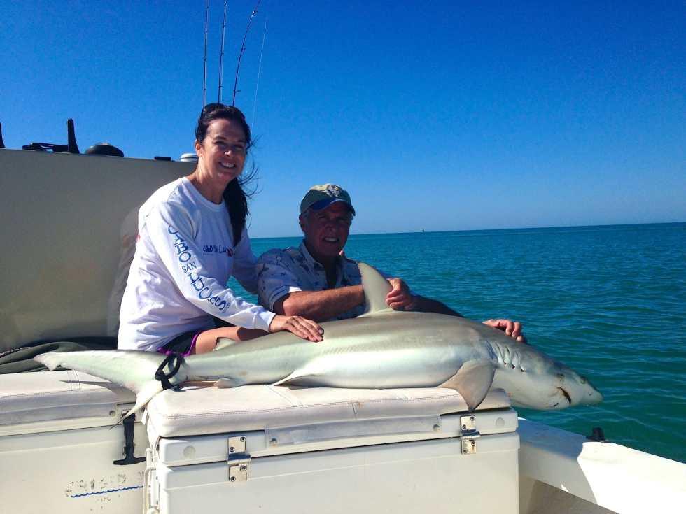 Spinner Shark caught offshore of Captiva Island, Sanibel & Captiva Islands & Fort Myers Charters & Fishing Guide Service. Thursday, September 28, 2017 [File Photo].