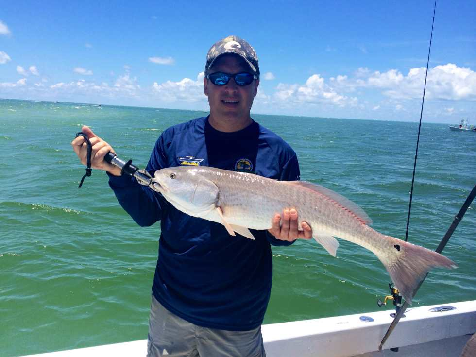 Redfish, 6-21-14, Sanibel & Captiva Islands & Fort Myers Charters & Fishing Guide Service.