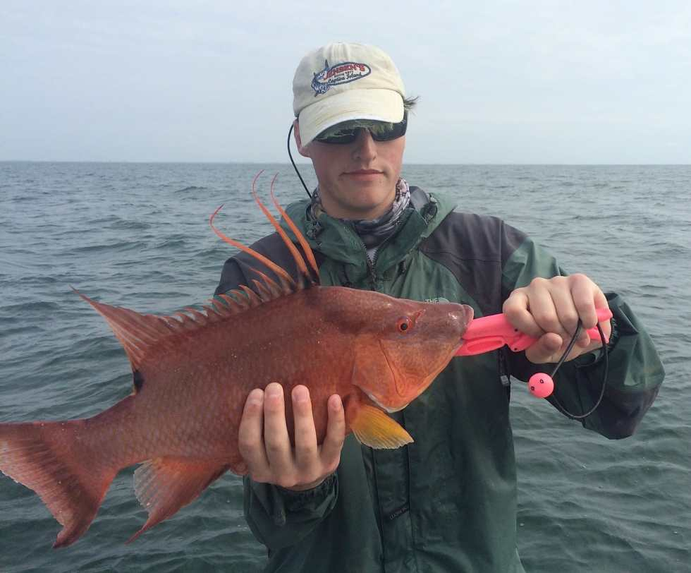 Big Hogfish, Charlie, 12-31-14, Sanibel Fishing & Captiva Fishing & Fort Myers Fishing Charters & Guide Service.