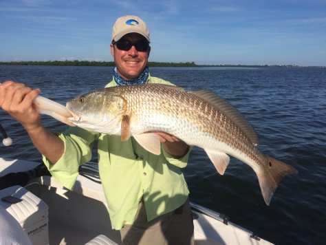 Redfish, Sanibel Fishing & Captiva Fishing, Saturday, November 4, 2017, [File Photo - Saturday, 10-31-15] .