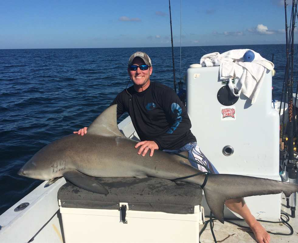 Bull Shark, Sanibel Fishing & Captiva Fishing, Wednesday, 11-4-15 ~ #Sanibel #Captiva.