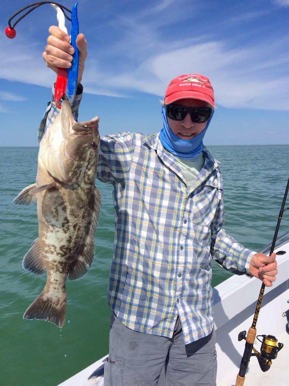 Gag Grouper, Offshore, Sanibel Fishing & Captiva Fishing, Tuesday, 3-1-16 ~ #Sanibel #Captiva.