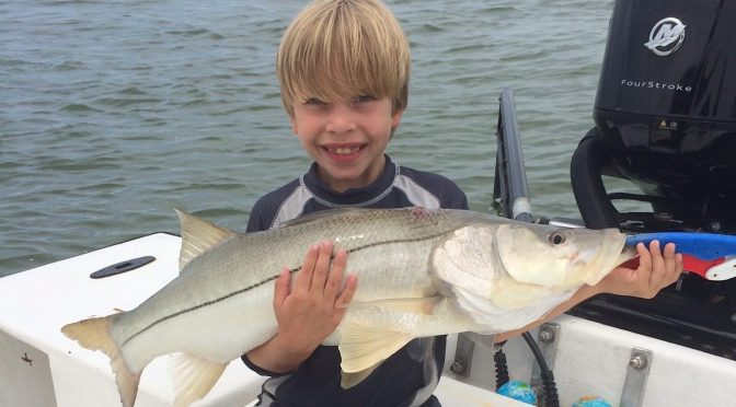 Captiva Fishing, Snook, September 17, 2017
