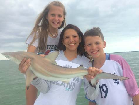 Blacktip Shark, Sanibel Fishing & Captiva Fishing, Sanibel Island, Monday, October 9, 2017.