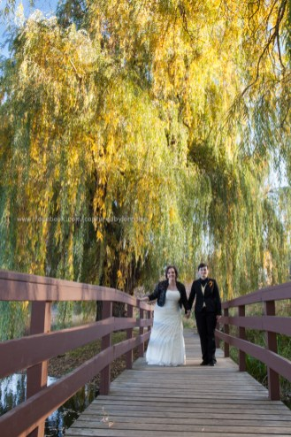 Wedding Bride LGBT Gay Fall Bridge