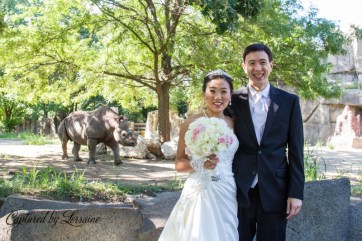Brookfield Zoo Wedding, Batavia Il photographer