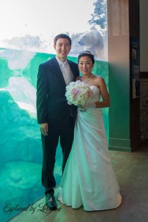 Brookfield Zoo Wedding, Batavia Il wedding photographer
