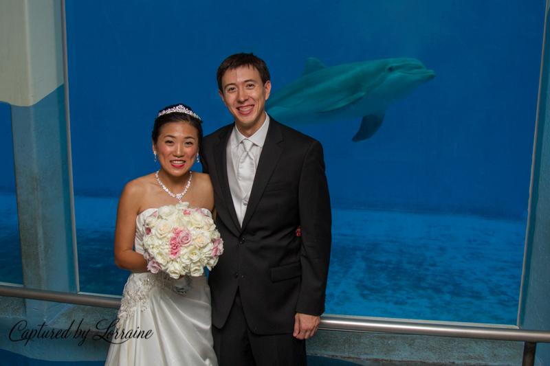 93-brookfield-zoo-wedding