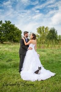 dog wedding photographer illinois