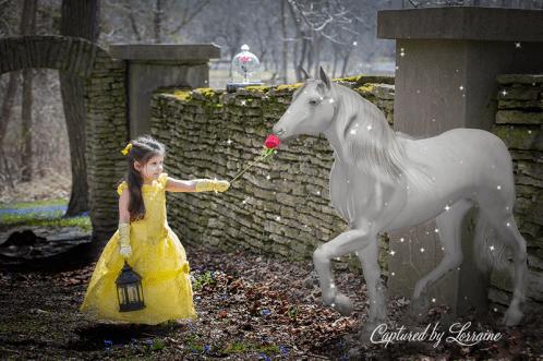 Beauty and the Beast photoshoot Geneva Il