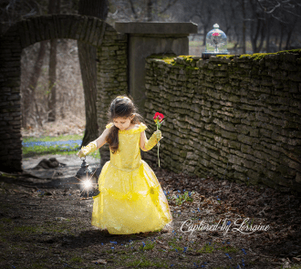 Beauty and the Beast photoshoot St Charles Il