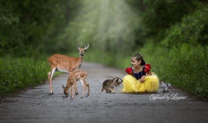 Magical fairty tale photo illinois