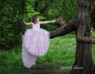 Magical fairy tale chile photo illinois