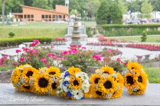 Phillips Park sunken garden Wedding