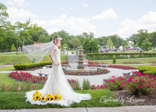 Phillips Park sunken garden Wedding