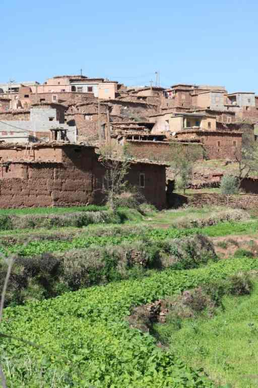 Berber villages with brown huts and a garden with herbs
