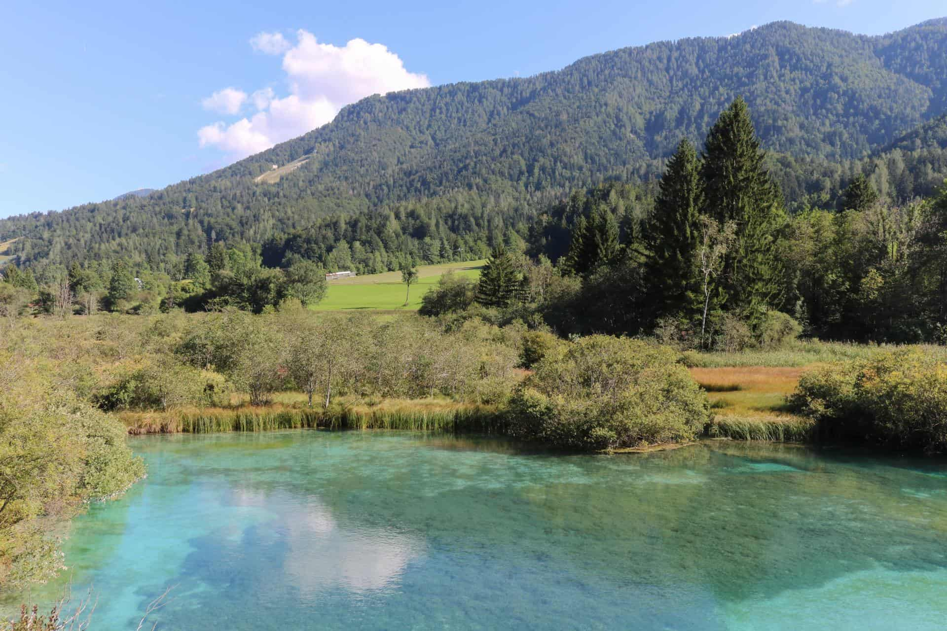 Zelenci Lake one of the most beautiful places in slovenia