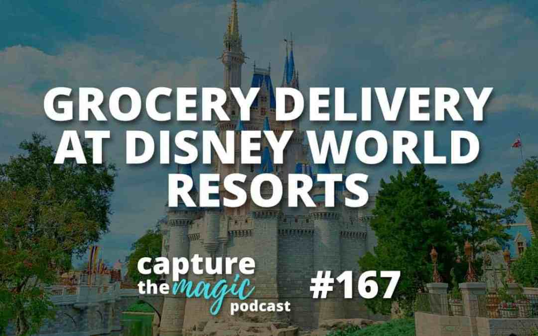 Ep 167: Grocery Delivery at Walt Disney World Resort Hotels