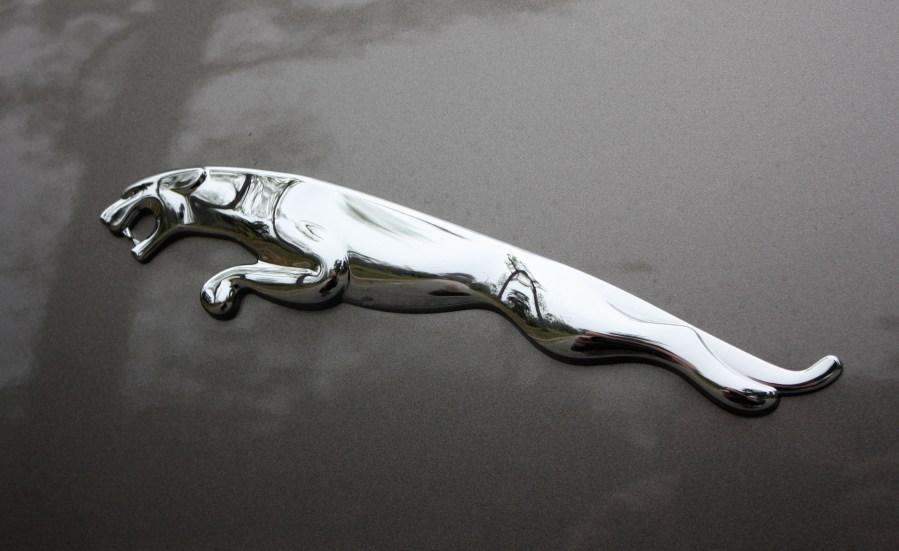 Jaguar Symbol Hd Photos Trueimages Full Hd Wallpaper Full Hd