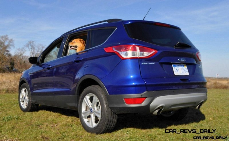 CarRevsDaily - 2014 Ford Escape and Drake the doggie